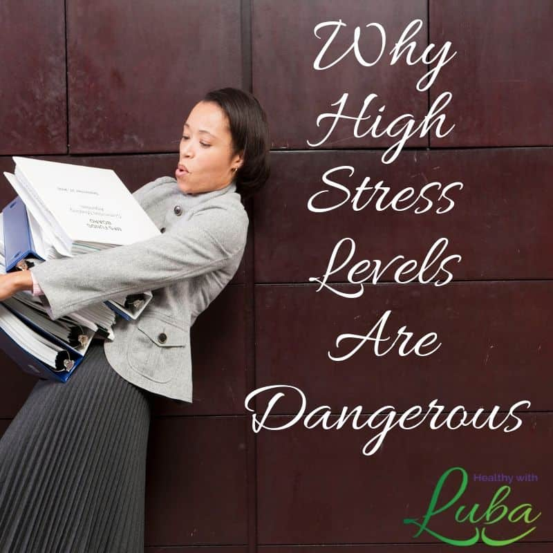 Why High Stress Levels Are Dangerous
